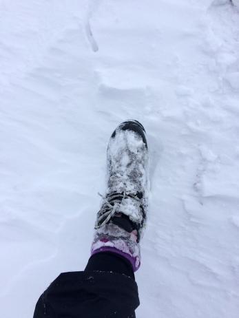 Ice boot